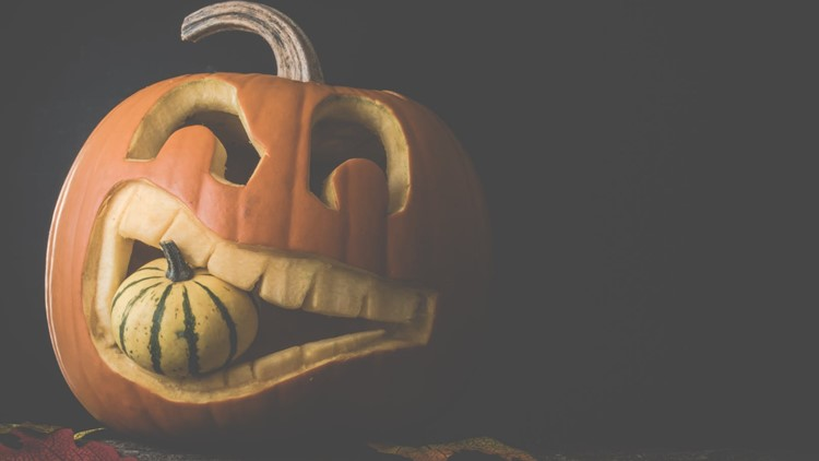 Pumpkins, candy and movies, oh my! Celebrate the season with Toledo's Fall Festival