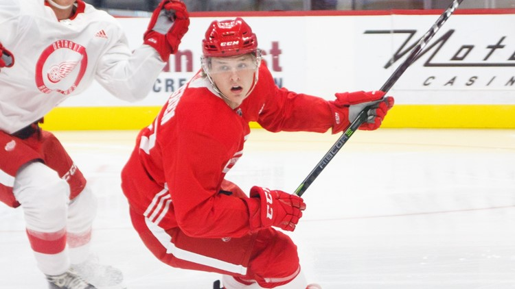 Red Wings prospect from Sweden has hilarious road trip mix-up while trying to get to Grand Rapids - Welcome to Ohio.