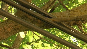 Call 11 for Action: Neighbors urge maintenance on tangled cable lines